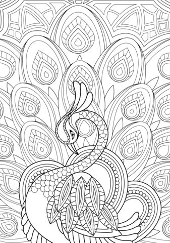 Zentangle Peacock with Ornament Coloring page