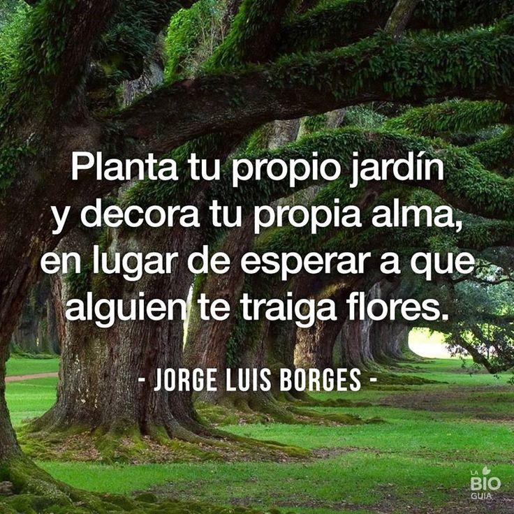 Planta tu propio jard n y decora tu propia alma en lugar for Decora tu jardin