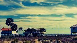 Boss Oyster, Apalachicola - Restaurant Reviews - TripAdvisor
