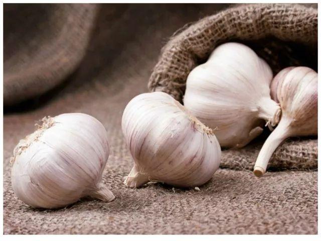 01.ajo remedios caseros para quitar las varices
