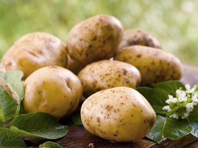 Šťava zo zemiakov je zázračný elixír! 13 dôvodov, prečo ju užívať: Pomôže pri liečbe cukrovky, rakoviny, čriev | Casprezeny.sk
