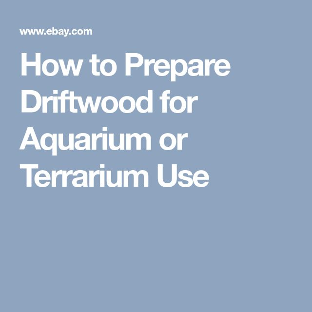 How to Prepare Driftwood for Aquarium or Terrarium Use