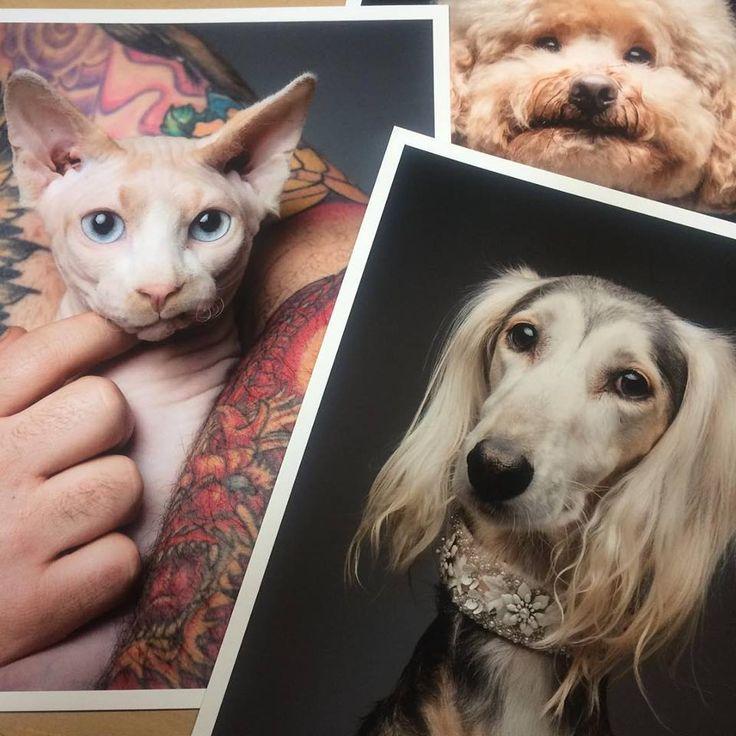 Algunas de las últimas impresiones #giclée para Sulekfotografia impresas en Canson Infinity Edition Etching Rag 310 gsm.  A partir del 13 de Abril y hasta el 10 de Mayo estarán expuestas una serie de fotografías de galgos en Modesto Barrenkale  ✨muchas gracias Ania y Jorge 👍🏻✨  #sulekfotografia #perracosflacos #perracasflacas #galgo #greyhound #sighthound #dog #doglover #glicee #gliceeprint #fotografia #perros #bilbao #basauri #cansoninfinity #dogsofinstagram #bestwoof #dogsphotography
