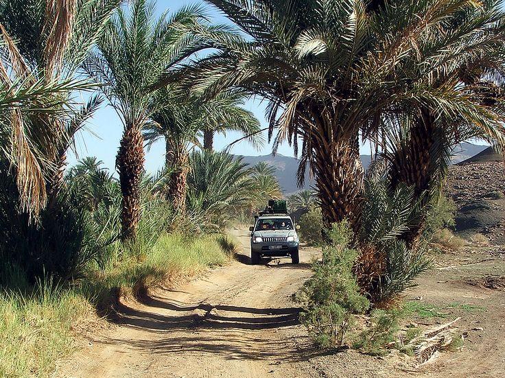 Reconhecimento / Recognition SDC 2014: Vale do Draa, Marrocos / Draa Valley, Morocco  #saharadesertchallenge #mundodeaventuras