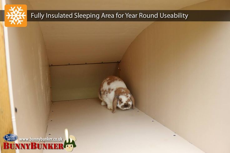 BunnyBunker features a fully insulated Sleeping Area with 35mm thick walls, floor, ceiling and door, comprising of 25mm Polyurethane sandwiched between 5mm wood plastic composite panels. We use Polyurethane insulation as it's one of the best insulators available, for example it's roughly twice as thermally efficient as loft insulation. This large, insulated room provides a sheltered space when it's cold outside, but can also potentially help keep rabbits cooler when the weather's hot.
