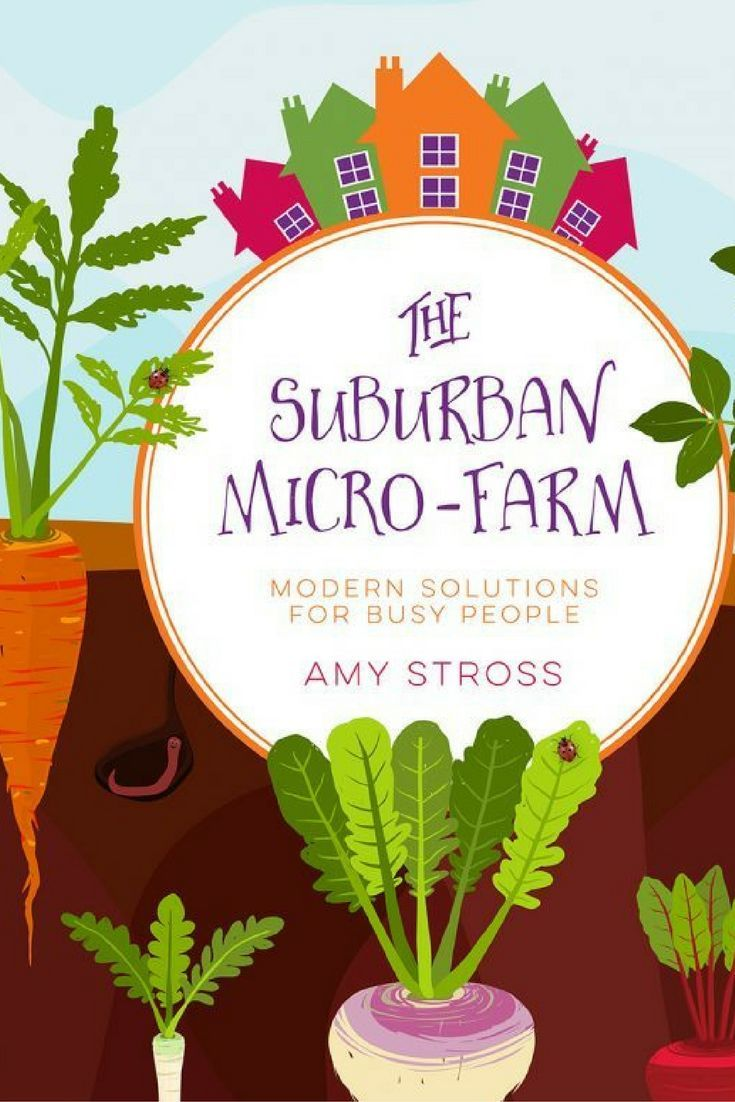 Vegetable garden graphic - The Suburban Micro Farm Modern Solutions For Busy People A Book About Growing