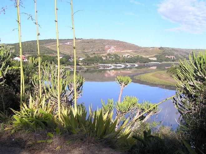 Kowie River near Port Alfred