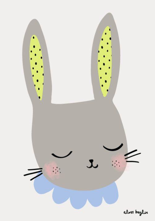 Cute rabbit / Lapin très mignon