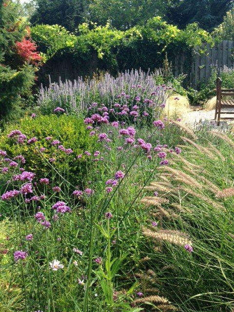 Négy Évszak kert Júliusban - Kertészet Siófok (3)