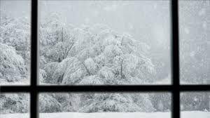 Resultado de imagen de clima polar hd