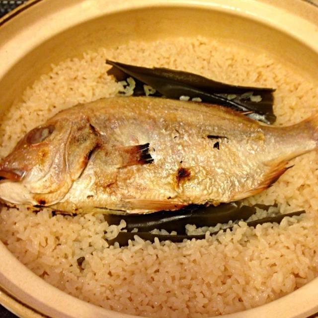 お店で食べると高いけど、安い鯛を買ってきて作れば気軽に食べれます。 - 13件のもぐもぐ - 土鍋で鯛めし by ayayilife