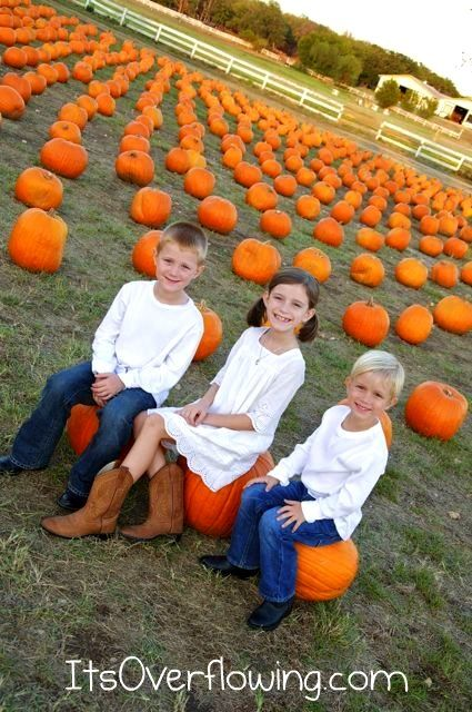 Pumpkin patches make great backdrops for fall pictures. This was our ninth year to take pictures in a pumpkin patch, eighth year at this particular spot. We've had both great and stressful experiences! Here are some tips for your next pumpkin patch photo shoot. -Go ...continue reading