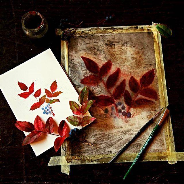 Experiments with autumn leaves by Sova Hůová @nestingspirits