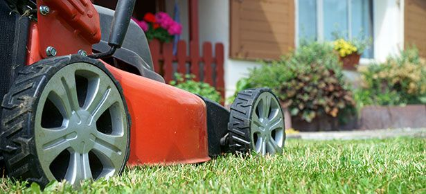 How to buy the best lawn mower. There are hundreds of lawn mowers on sale - but only a few are easy to use and leave a great finish on your lawn. This expert guide will help you find the best lawn mower for you.