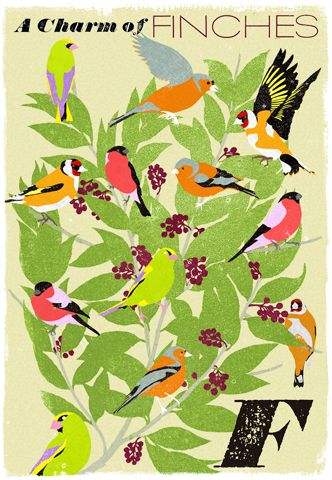 I love collective nouns. The posters from Woop Studios are fantastic.