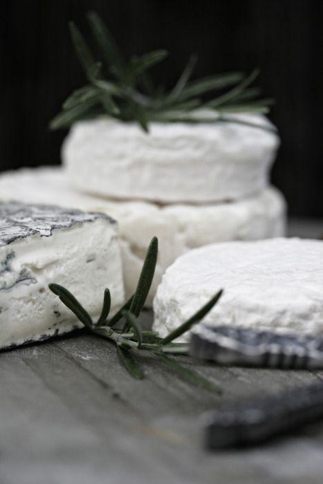 """Cheese…"""
