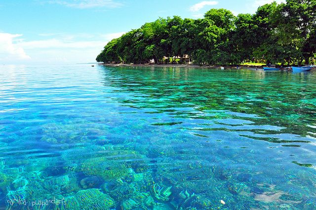 Bunaken National Marine Park, Manado, North Sulawesi, Indonesia ♥