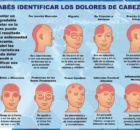 Undolor de cabezaes una molestia en la cabeza o el cuello. Los tipos de dolores de cabeza comunes incluyencefaleas tensionales omigraña, dolores de cab