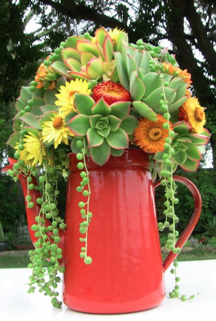fun succulent arrangement in a repurposed vintage coffee pot