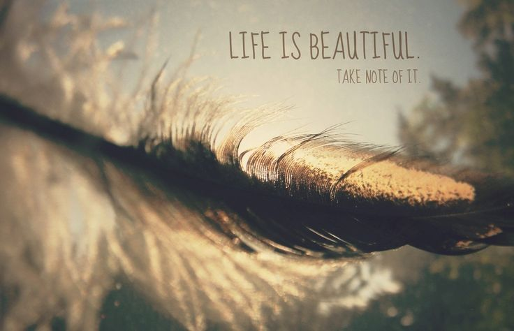 It's a beautiful life. You learn you win you lose but you get up. http://ift.tt/1SnM4tJ