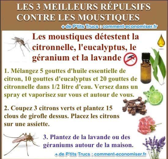 Marre des moustiques qui n'arrêtent pas de vous piquer ? Vous cherchez des trucs efficaces pour repousser ces satanés insectes ? Vous êtes au bon endroit ! Et pas besoin d'acheter d'insecticides chimiques pour ça.  Découvrez l'astuce ici : http://www.comment-economiser.fr/3-meilleurs-repulsifs-naturels-contre-les-moustiques.html