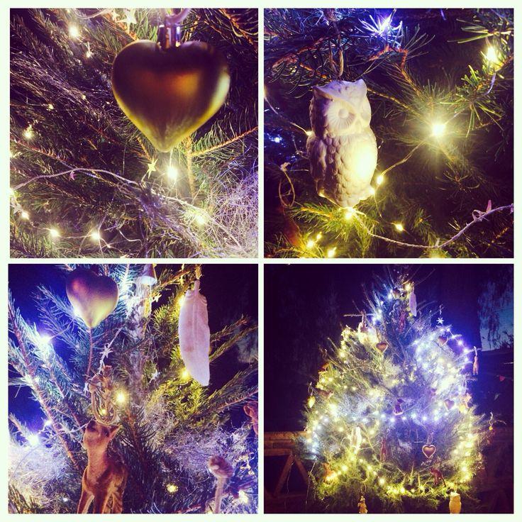 Kerstsfeer op de Finca! #christmas