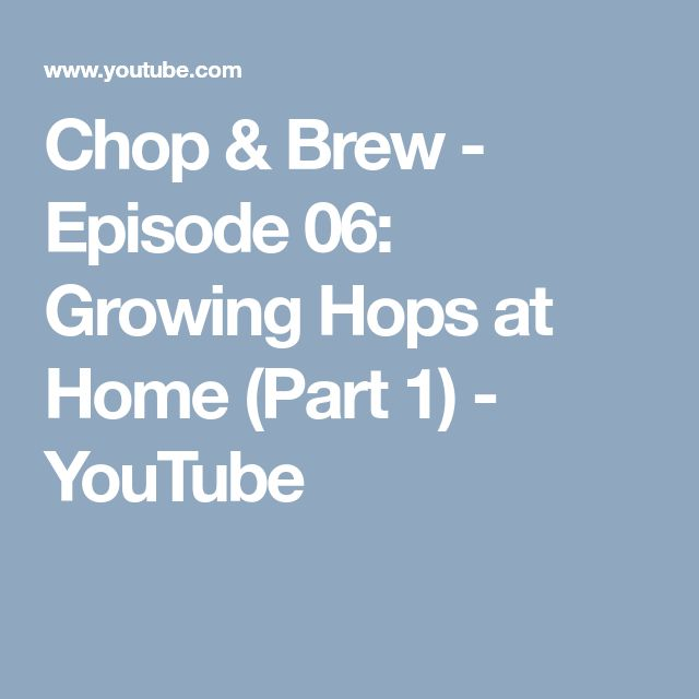 Chop & Brew - Episode 06: Growing Hops at Home (Part 1) - YouTube