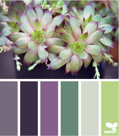nature made huesPainting Colors Purple, Purple Grey Colors Palettes, Colours Palettes Grey Purple, Inspiration Colors, Wedding Ideas, Design Seeds Purple, Living Room, Purple Grey Colours Palettes, Grey And Purple Colors Schemes
