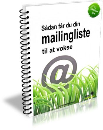 Short report on how to get your email list to grow by Rikke Moos