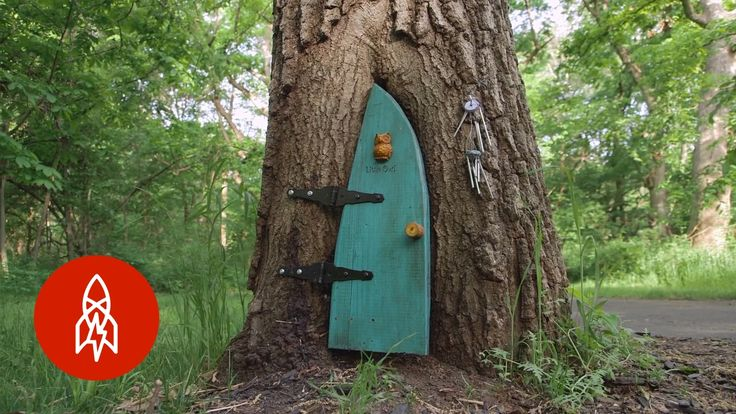 Deep in the forest of Overland Park, Kansas little gnomes made a home. But how did they get there? Experience the feel-good story of paying it forward, one t...
