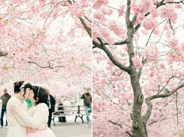 Online dating site cherry blossom-in-Wangamomon