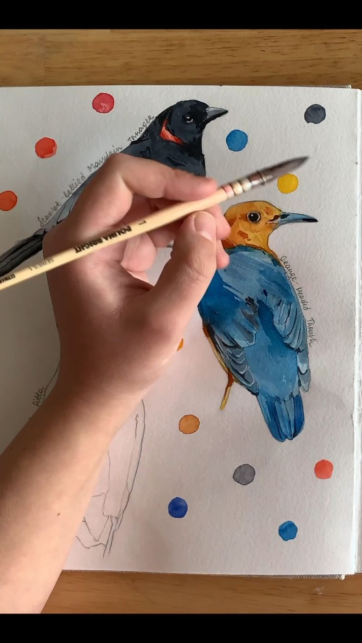 Birds 🖤 by Polina Bright #watercolourbrush #paintingtutorial #art #drawing #birdsdrawing
