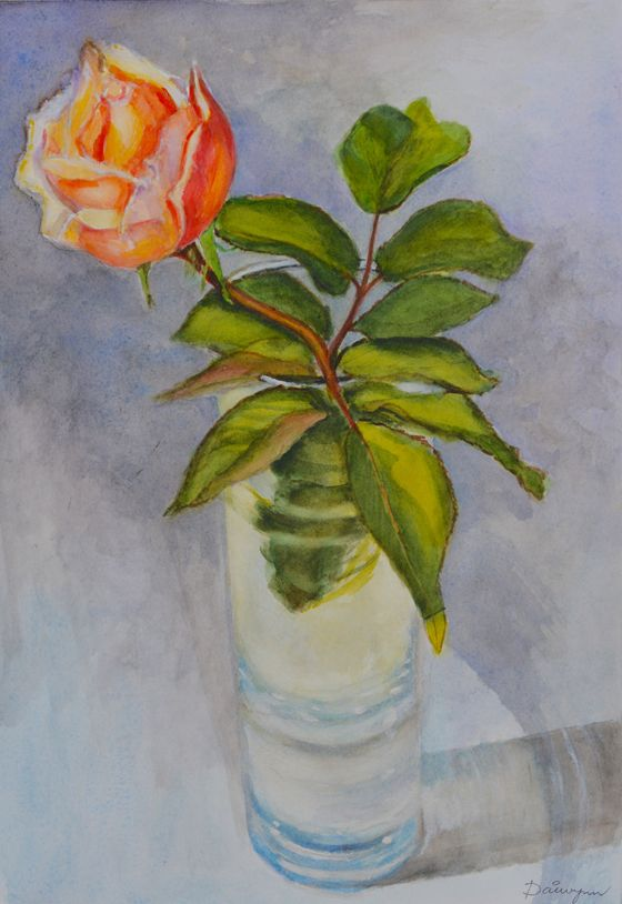 Pencil and watercolour painting by Dai Wynn of a rose in a glass vase on my studio desk.  A3 size: 42 cm high by 29.5 cm wide.  Painted on smooth surface 2300gsm Arches french cotton paper.  Unframed. Check availability of the original at http://www.daiwynn.com