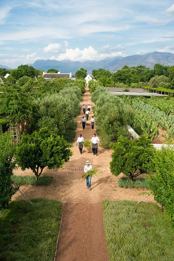 Babylonstoren Farm and Hotel, South Africa ... Hotel guest can pluck and cook their own organic veggies in the kitchens of their bungalows, or let the Chef's do the work at the restaurant. They raise their own free range eggs and grass fed beef, make their own wine and olive oil, NICE!!!!