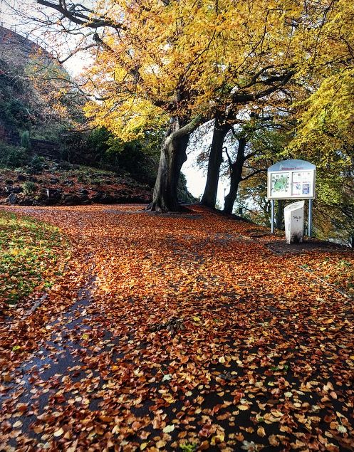 Path up to Clitheroe Castle, Ribble Valley, Lancashire, England, U.K.