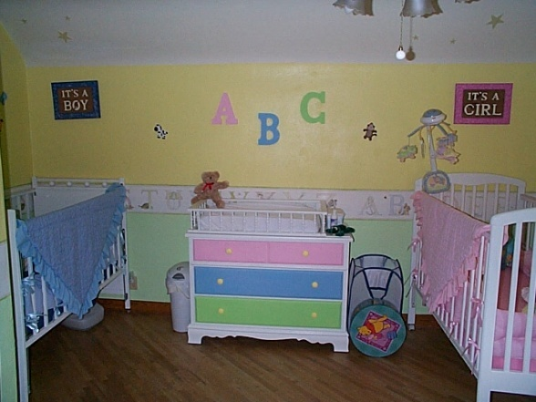 28 best images about bedroom ideas for multiples on for Baby twin bedroom ideas
