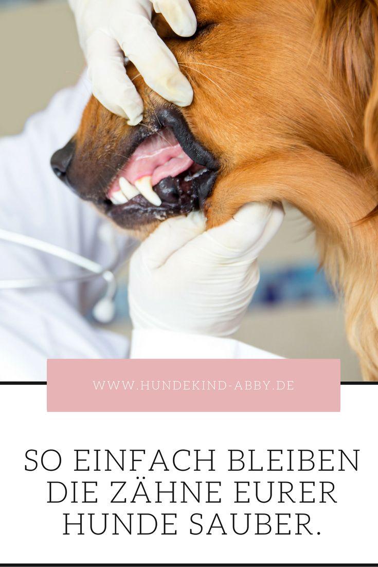 Natürliche Zahnpflege – so geht's!