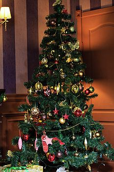 Christmas tree in interior #NadyaEugenePhotography #Christmas #NewYearTree