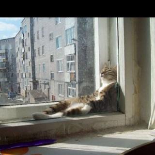Window sill lounge