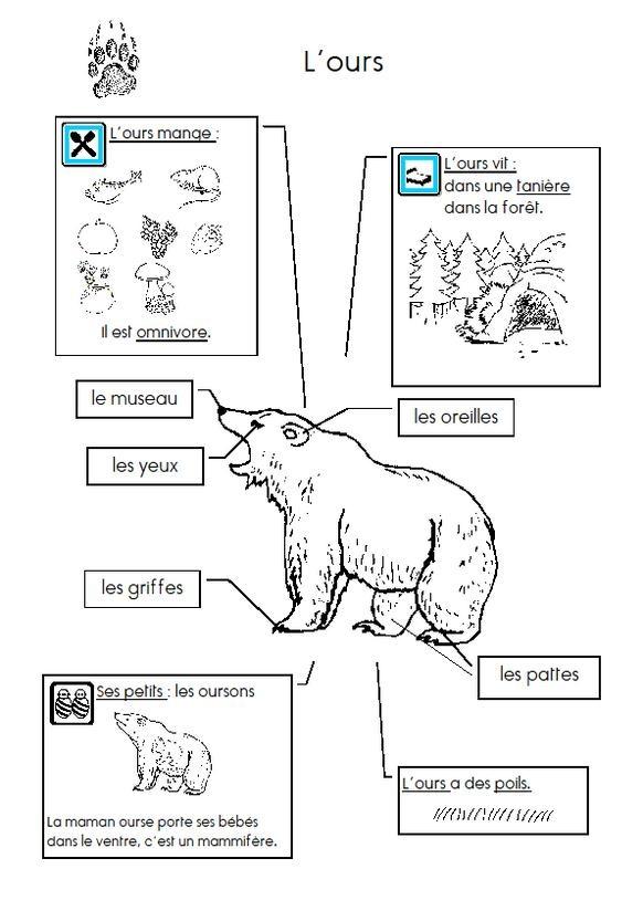 Le Sac à Idées : nombreuses fiches animaux