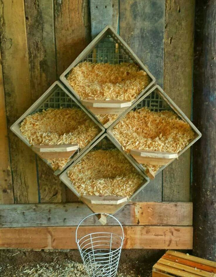 Milk Crate Chicken Egg Boxes! Love this set-up! :)