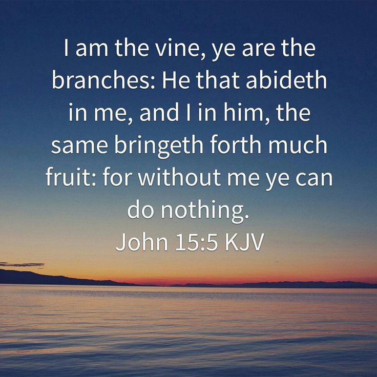 210 Best (John 15:1-5, ESV) I Am The True Vine Images On