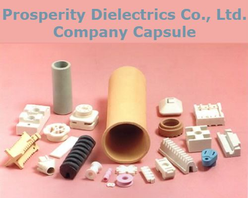 This Company Capsule of Prosperity Dielectrics report is a crucial resource for industry executives and anyone looking to access key information about the company