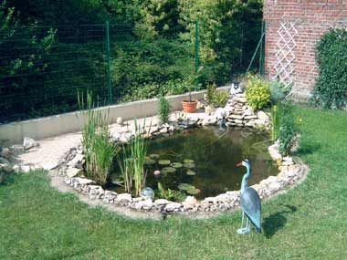 Am nagement d 39 un bassin ext rieur ponds pinterest - Amenagement d un bassin de jardin ...