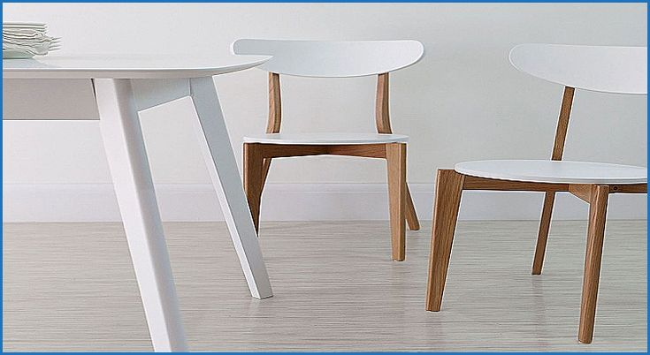 Lovely Modern Cheap Dining Chairs - http://countermoon.org/modern-cheap-dining-chairs