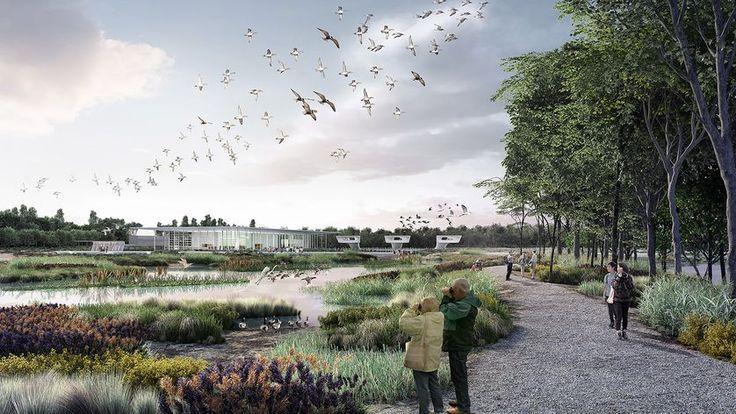 Fågelflygplatsen enligt Mc Gregor Coxalls skisser.