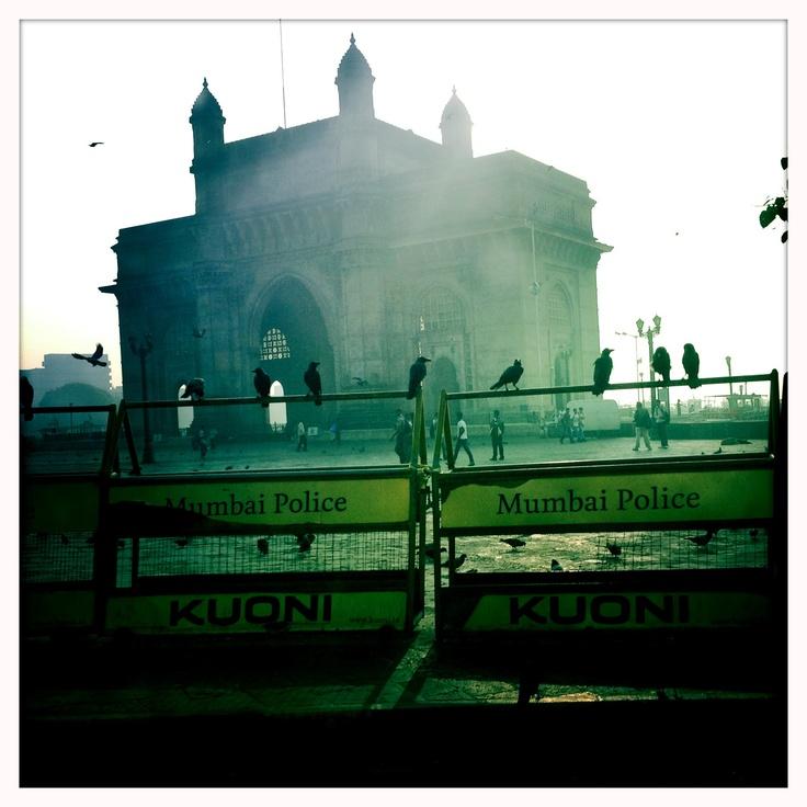 Crows, Taj, Gateaway, Mumbai