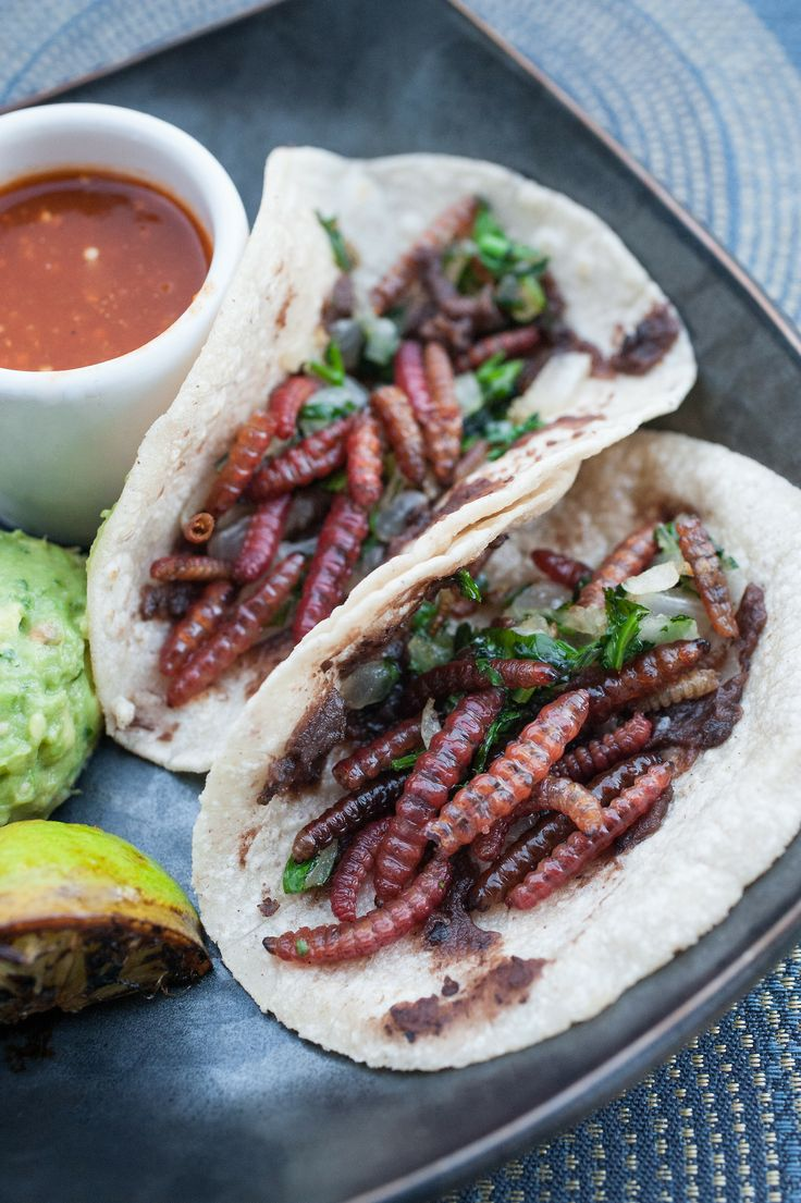 My photo shoot at Caracol introduced me to food I hadn't experienced before. tacos de gusano - sautéed maguey worms atop fijoles, guacamole ...