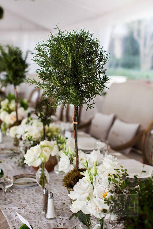 Topiary centerpieces are fun and unique | @christianoth | Brides.com