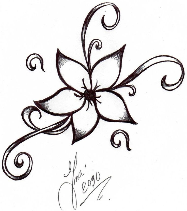 Drawn Peony Easy